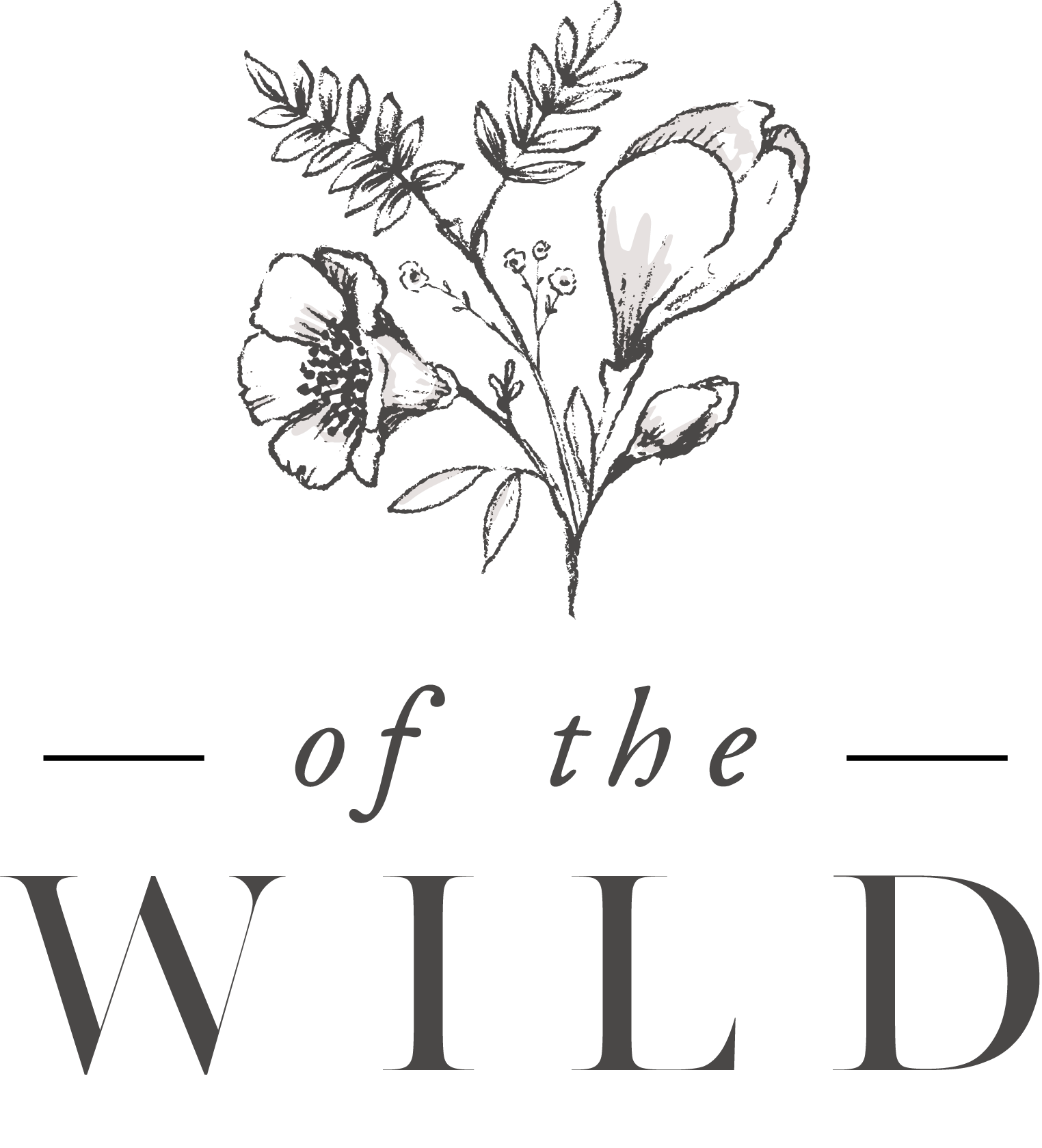 This is the of the wild logo